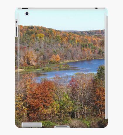 Scenic Overlook iPad Case/Skin