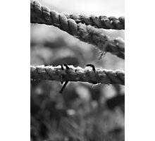 Nail Rope Photographic Print