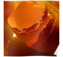 Egg day. IV Poster