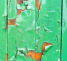 """The Green Door"" by Michelle Lee Willsmore"