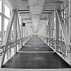 Bridge to Glory by Anthony M. Davis