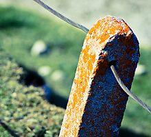 Rusty Pole by Liev
