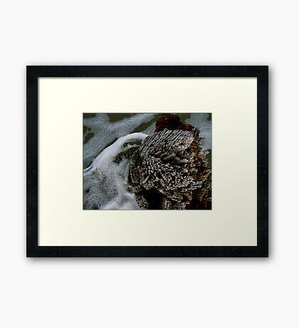 Sea Swirls Framed Print
