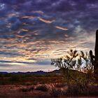 A Desert Sunrise  by Saija  Lehtonen