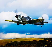 Spitfire Mk XVI TE311 by Chris Lord