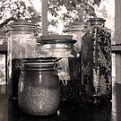 Jars by Jay Reed