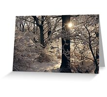 Golden Silvery Greeting Card