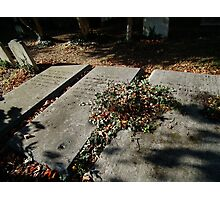 Autumn gravestones  Photographic Print