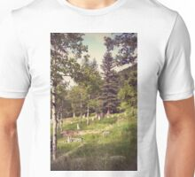 Idaho Springs Cemetery Unisex T-Shirt