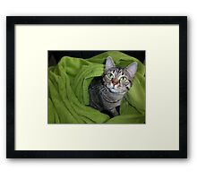 Windows to her soul Framed Print