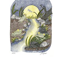 Frogs at Night Photographic Print