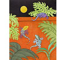 Moon Over My Geckos Photographic Print