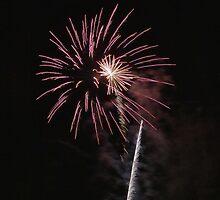 Enmore 2010 Australia Day Firework #2 by yewenyi