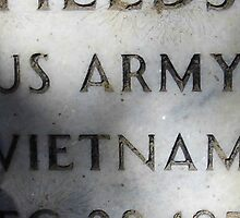 'Nam Memorial by WildestArt