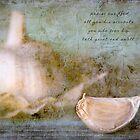 Garlic by JulieLegg
