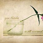 Gratitude by JulieLegg