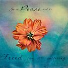Peace Coreopsis by JulieLegg