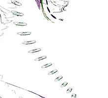 Footsteps by Benedikt Amrhein