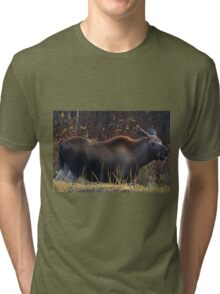 Young (Smile for the Camera) Moose-Alaska Tri-blend T-Shirt