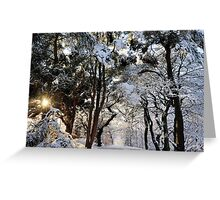 Icy Beauty Greeting Card