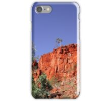 Alone at the top iPhone Case/Skin