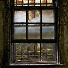 Cell Window by Mike Traynor Photography