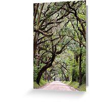Edisto Island, South Carolina Greeting Card