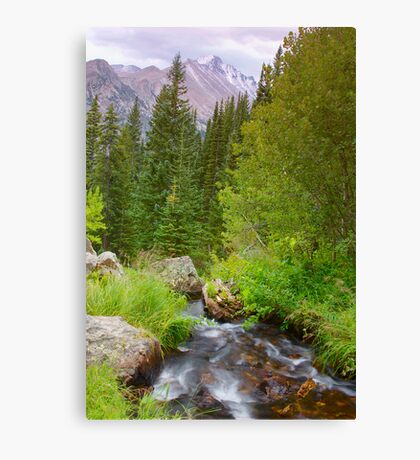 Fall Creek in Rocky Mountain National Park Canvas Print