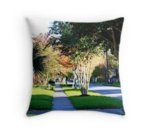 Gale Street Throw Pillow