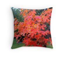 Fall Maple Bonsai Throw Pillow