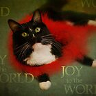 Joy to the World by Lynn Starner
