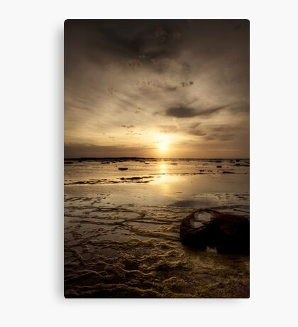 Sun on the Reef Canvas Print