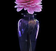Dahlia In Evening Dress by Gregory J Summers