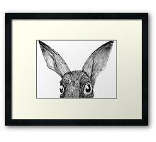Peek-a-boo Rabbit Framed Print
