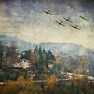 Plane Formation over Burrard Inlet by Tracy Riddell