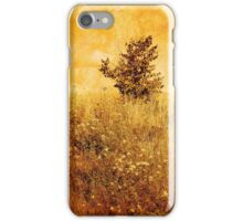 Old Picture of Landscape iPhone Case/Skin