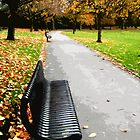 Fall park bench by cycreation