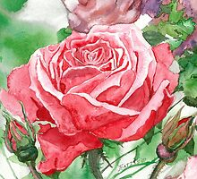 Red Rose in Full Blossom by clotheslineart