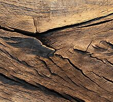Aged Wood by Ian Jones