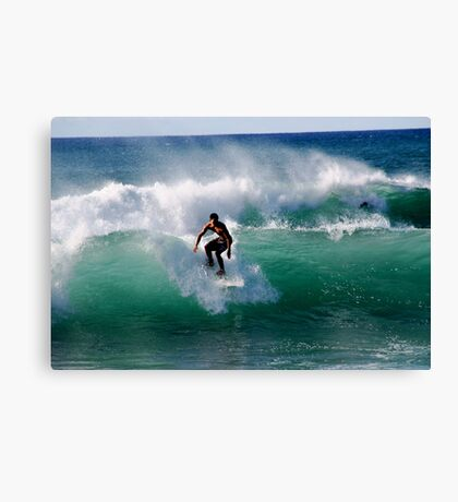 Droppin' In Canvas Print