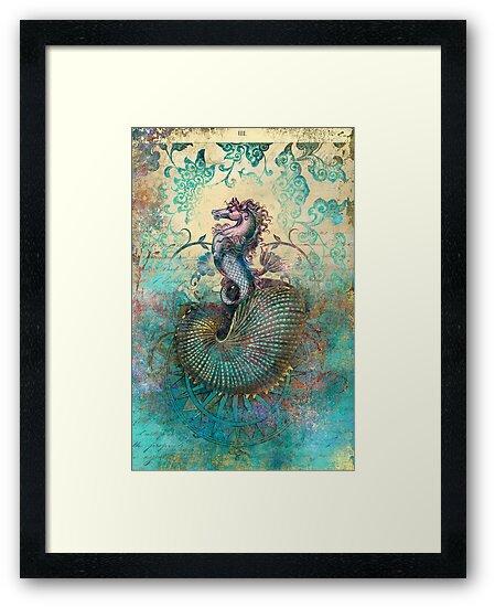 The Seahorse Diary by Aimee Stewart