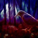 Raven's Wood by shutterbug2010