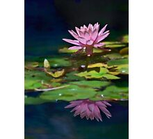 Pink lily reflected Photographic Print