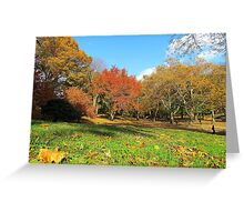 Autumn in Central Park, New York City  Greeting Card