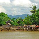 Irrawaddy River village,  Burma by John Mitchell
