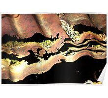 Rusty Iron Sheets Poster