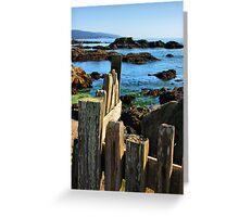 Sonoma Coast Greeting Card