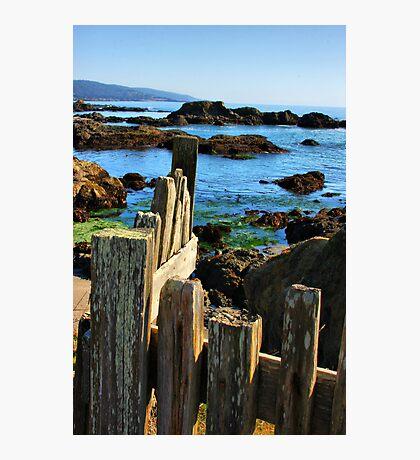 Sonoma Coast Photographic Print