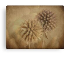Aged & Muted Canvas Print