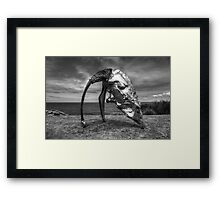 Cultivated Steel Framed Print